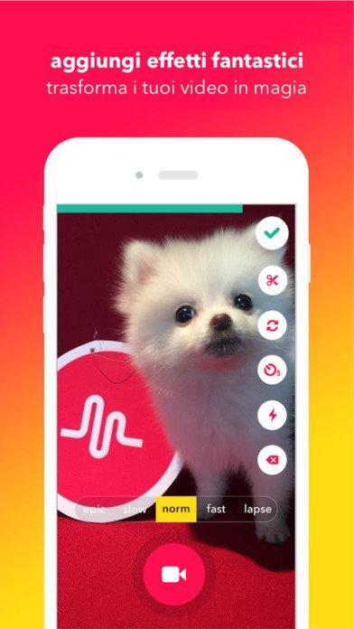musically-app-4