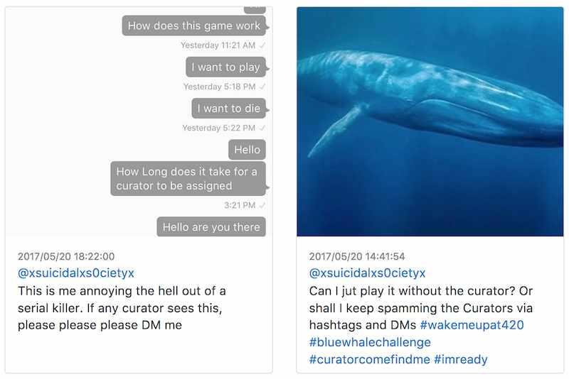 Un post trovato su Instagram, di un'aspirante partecipante alla Blue Whale