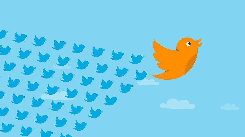 influencer marketing e social media