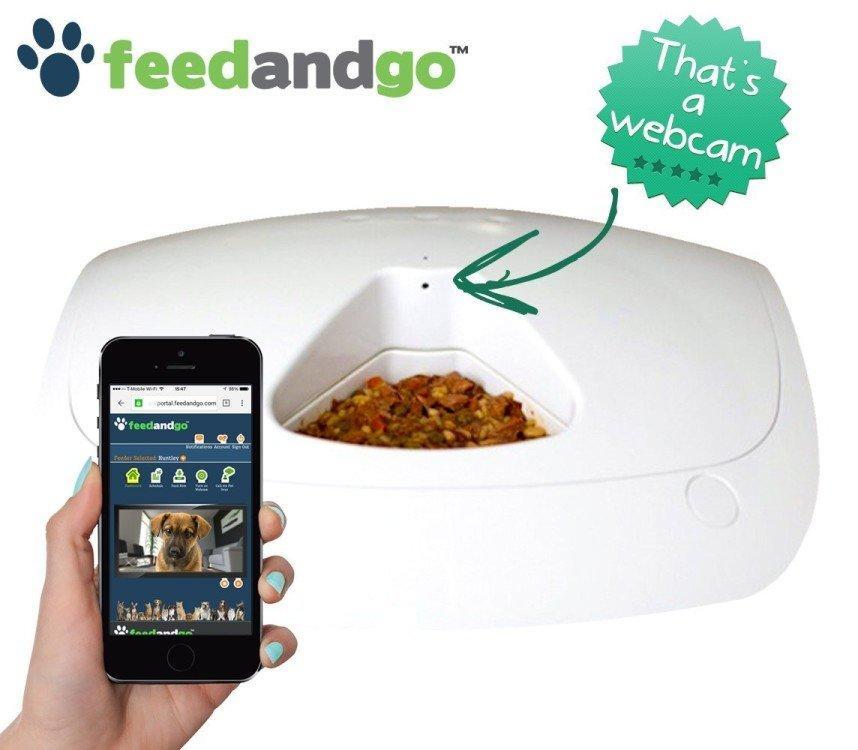 feedandgo