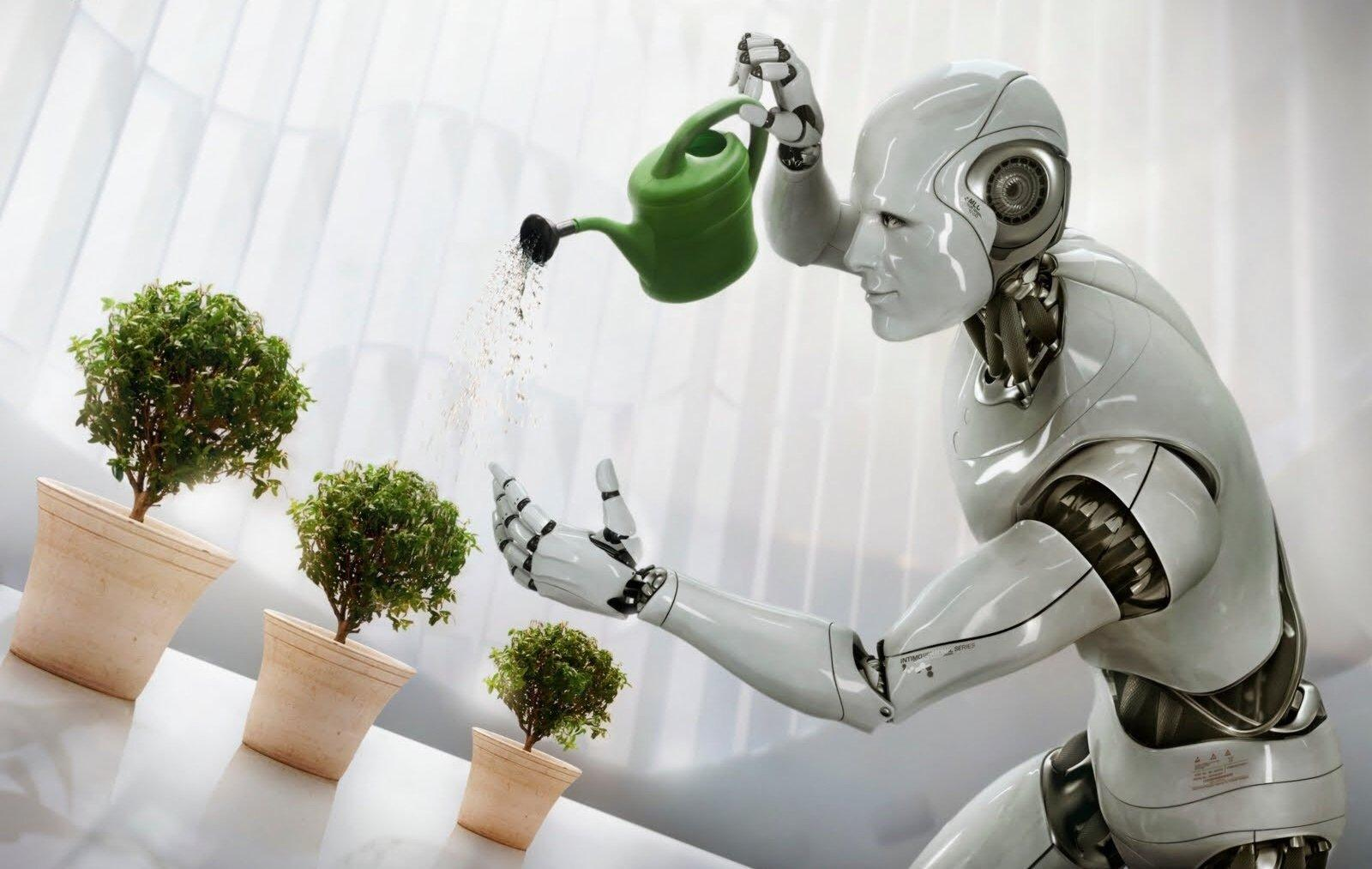 Tre mesi fa Alibaba ha aperto un magazzino gestito da robot. Dice che lavorano 3 volte meglio dell'uomo
