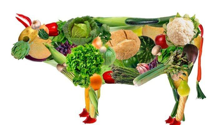 mc vegan mcDonald