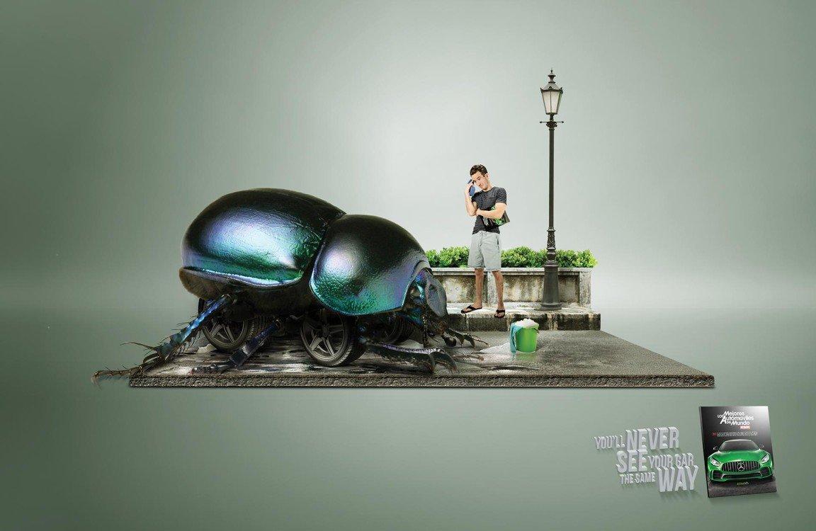 03_beetle