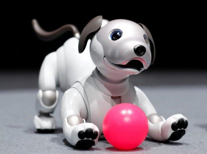 Desideri un dolce cucciolo… meccanico? Ecco AIBO, il tenerissimo cane robot della Sony