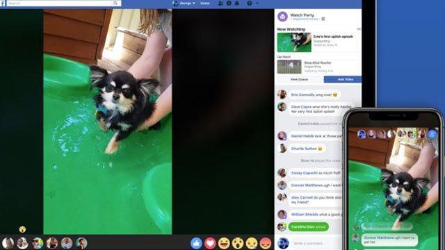 facebook_e_il_suo_nuovo_test_per_una_visualizzazione_comune_dei_video_per_i_gruppi
