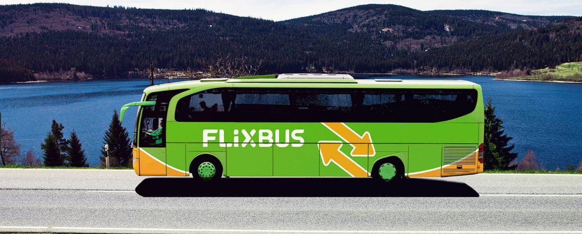 Elezioni Europee, Flixbus ti rimborsa il viaggio se vai a votare