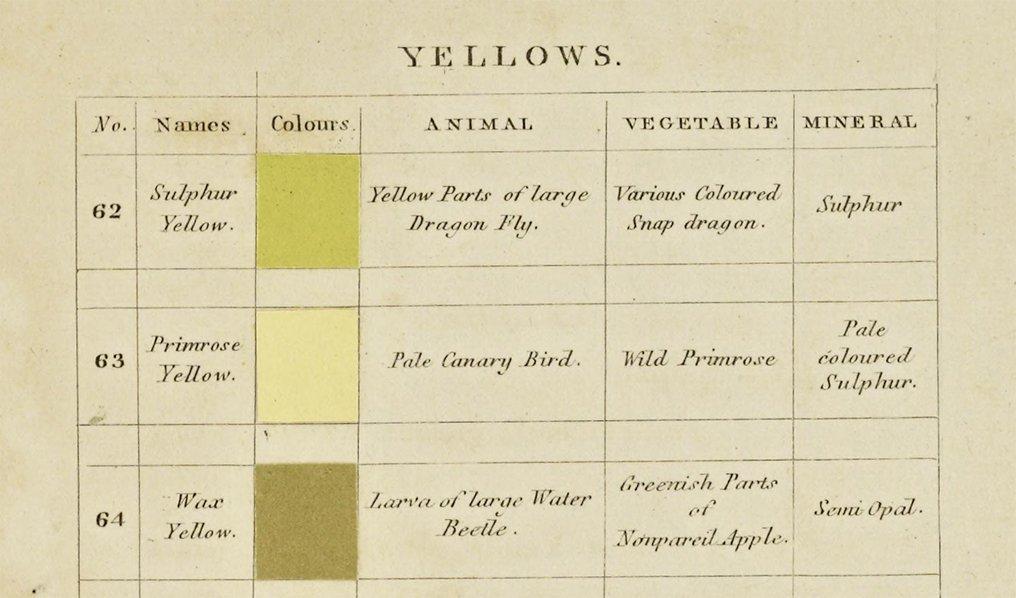 Nomenclatura dei colori Gialli (1)