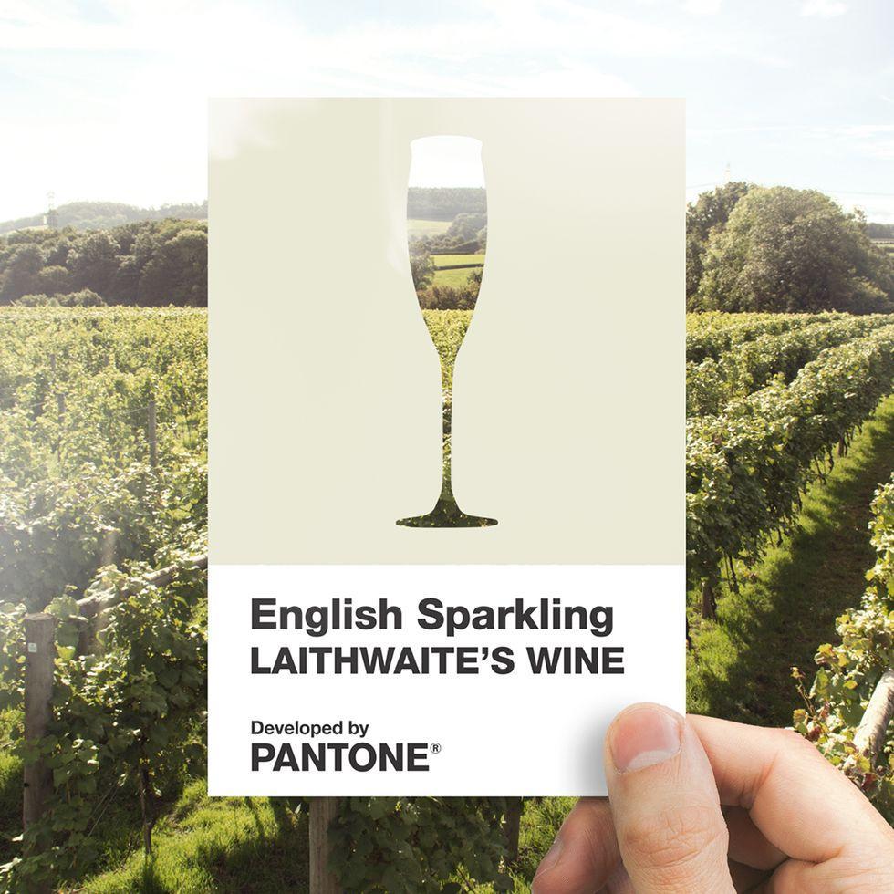 Un nuovo colore Pantone, ispirato al vino frizzante inglese