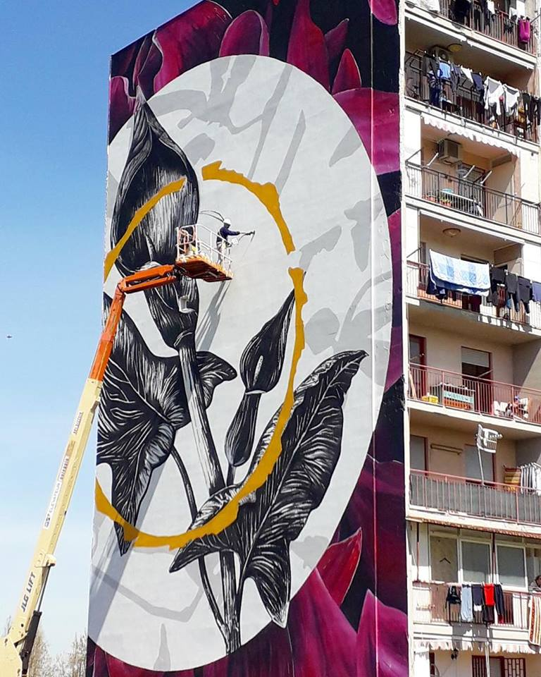 La filosofia colorful di Linvea tra territorio e street art_1