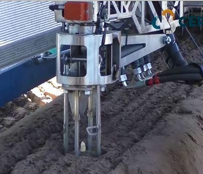 VIDEO Il robot che raccoglie gli asparagi con una sonda elettrica