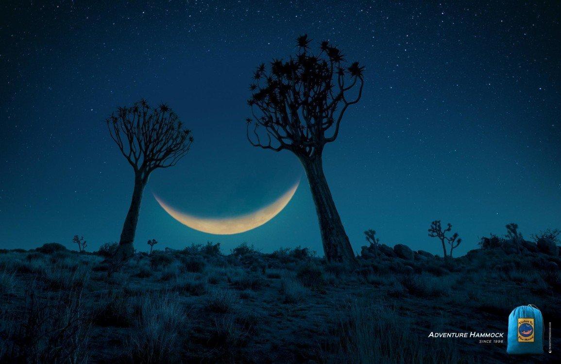 savannah_moon