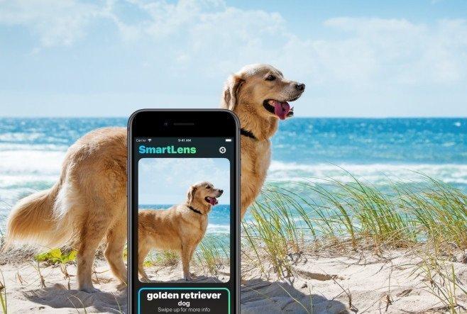 SmartLens, lo Shazam del mondo reale, è l'app creata da uno studente