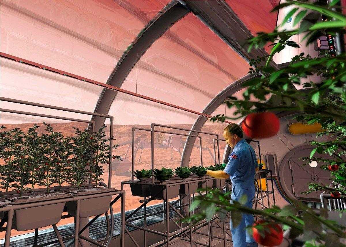 Ecco cosa mangeranno gli astronauti che sbarcheranno su Marte