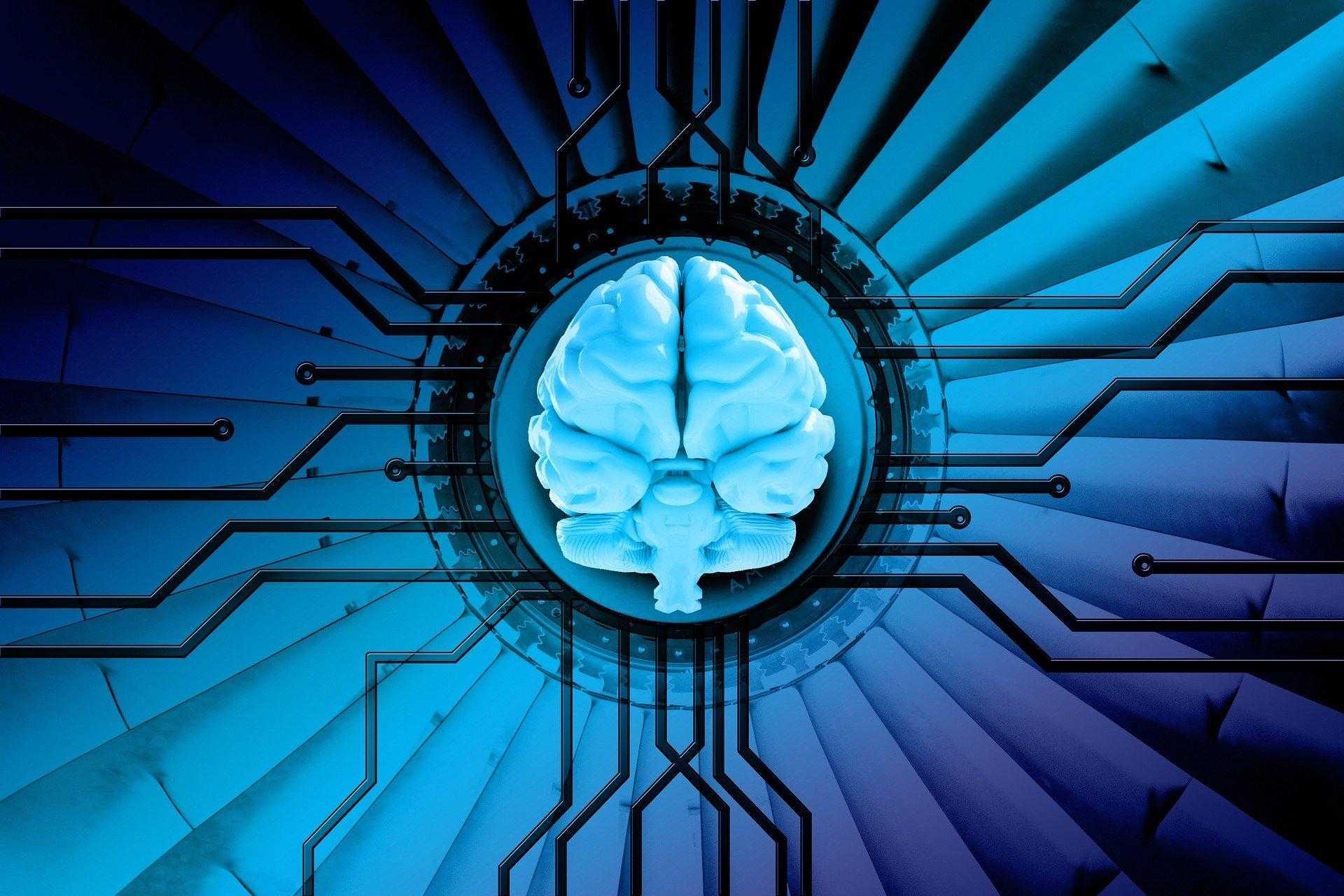5 applicazioni delle reti neurali che già utilizziamo (senza saperlo)