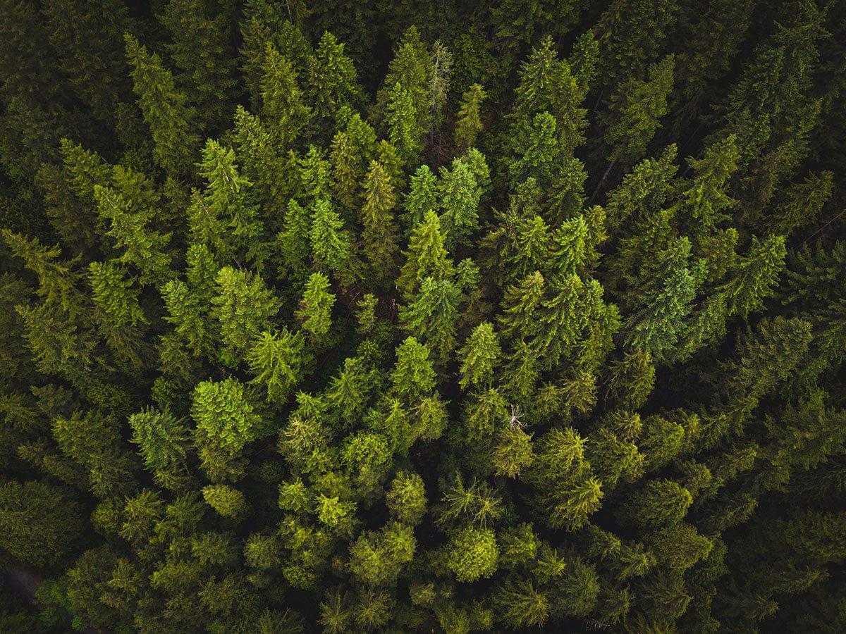 contenuti_evergreen_da_pubblicare_estate