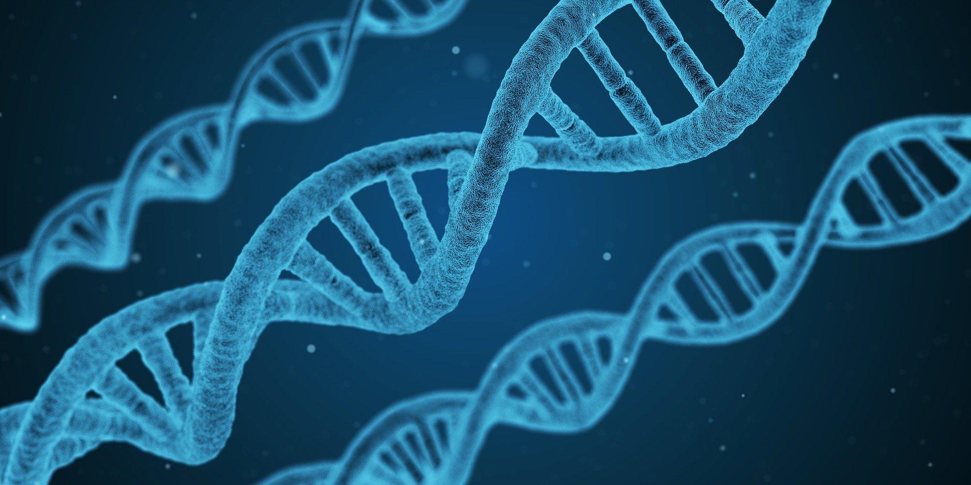 biotech dna