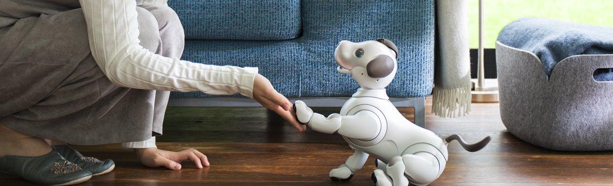 VIDEO Intelligenza Artificiale: Aibo, il cane robot di Sony