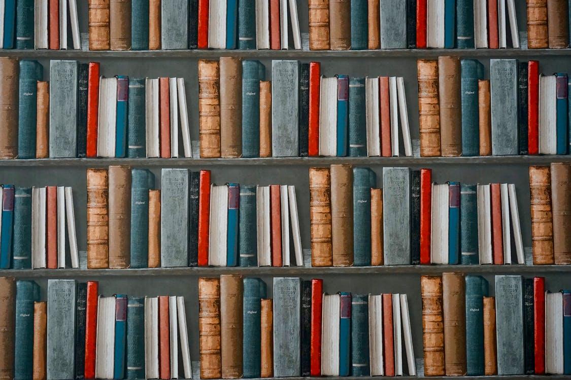libri letteratura social 2