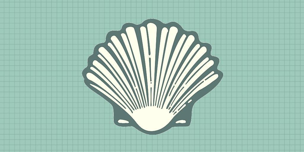shell-linguaggio-programmazione