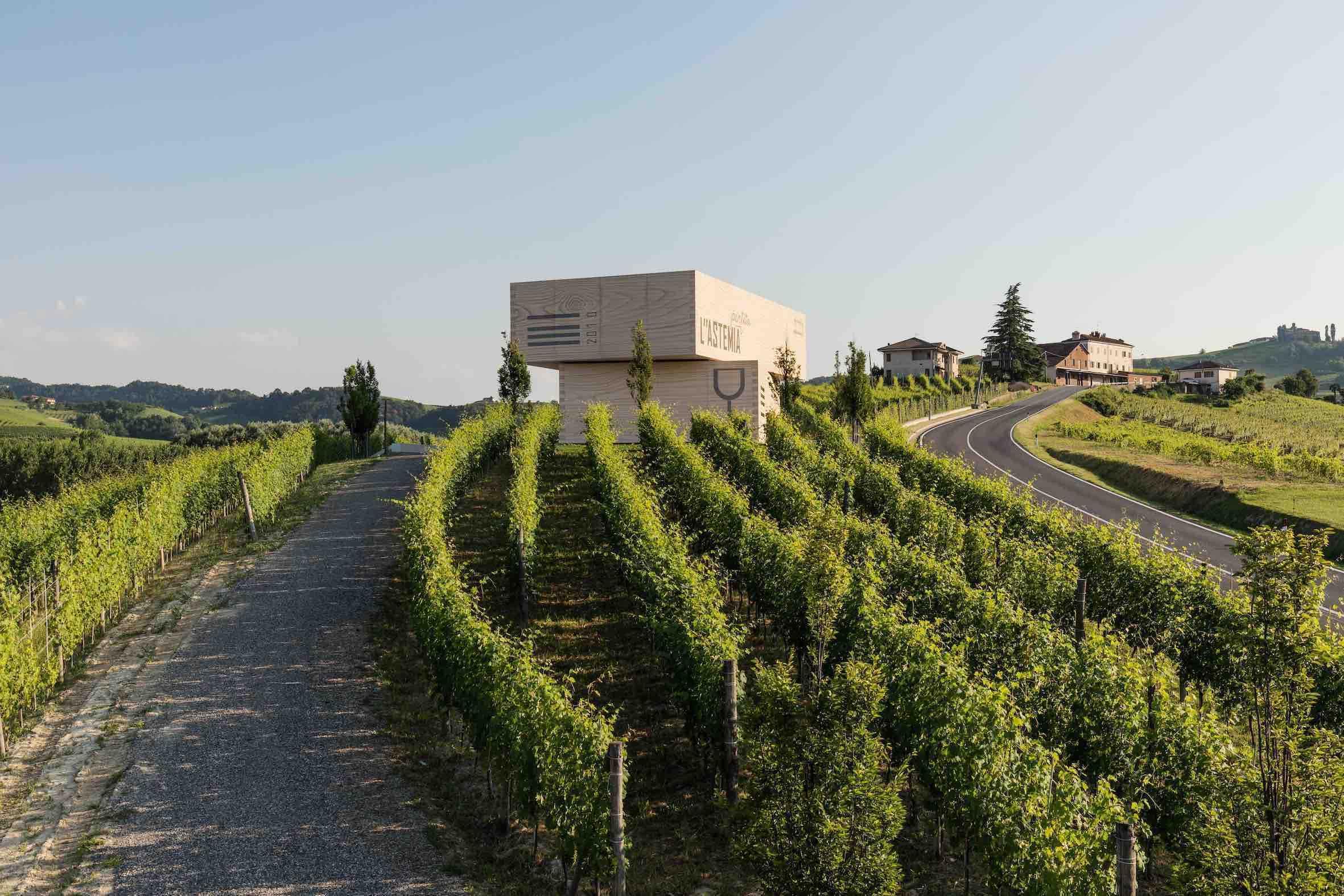L''astemia pentita: chi lo ha detto che il vino non fa per i millennials?
