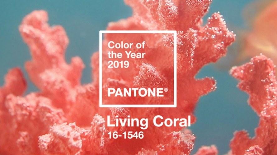 Pantone presenta Living Coral, il colore perfetto per il 2019