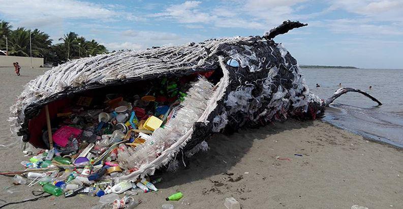 Pantene, Dove e gli altri big brand che vogliono combattere l'inquinamento da plastica