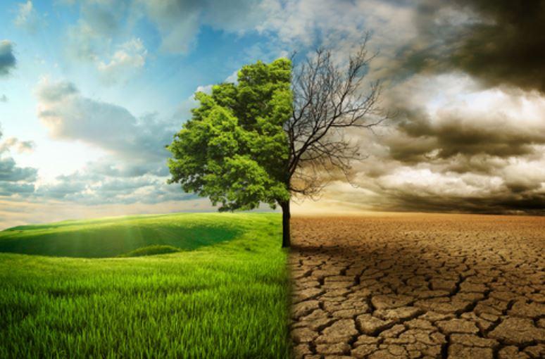 Le Tech Company proclamano il loro impegno contro il cambiamento climatico, ma non è abbastanza