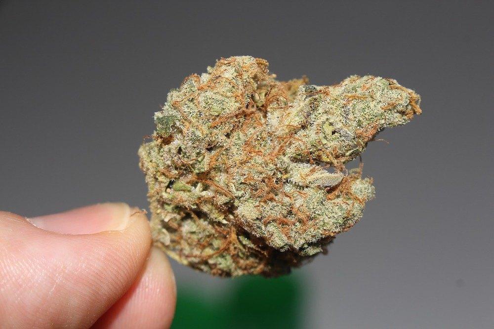 Cannabis legale: il super affare, che macina posti di lavoro e investimenti