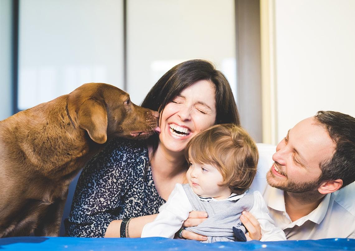 MSD Animal Health ci spiega come si accoglie in casa un nuovo amico a 4 zampe