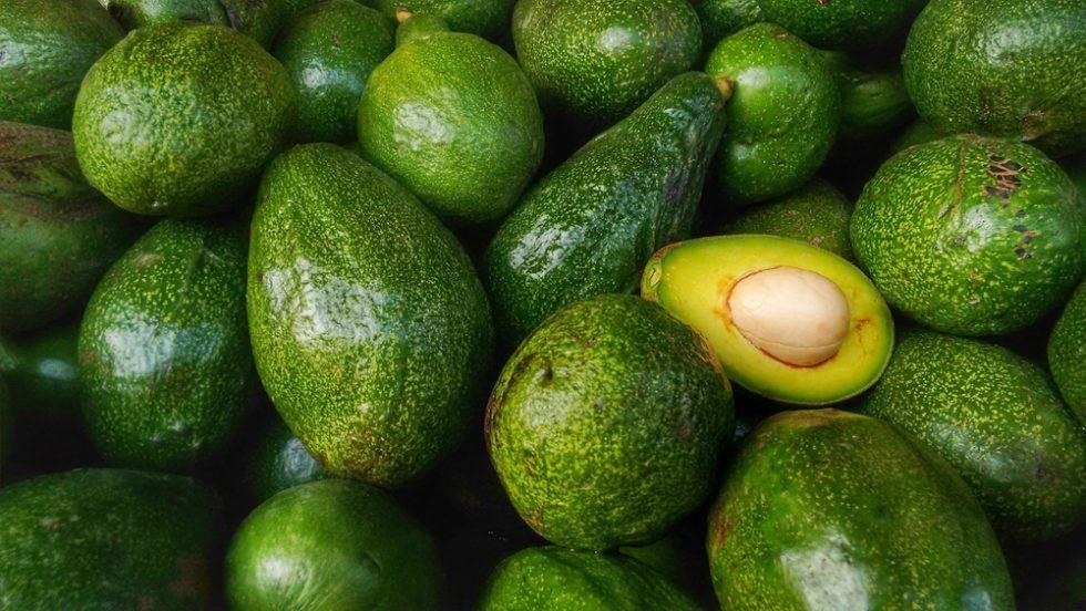 Avocado: il frutto più amato dai millennials in mano ai Cartelli messicani
