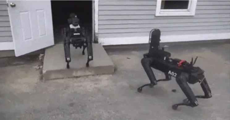 Negli Stati Uniti la polizia avrebbe già in dotazione i cani robot di Boston Dynamics