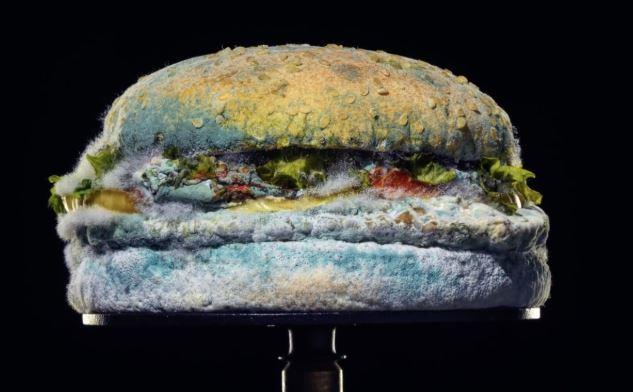 Ecco perché Burger King pubblicizza un Whopper ammuffito