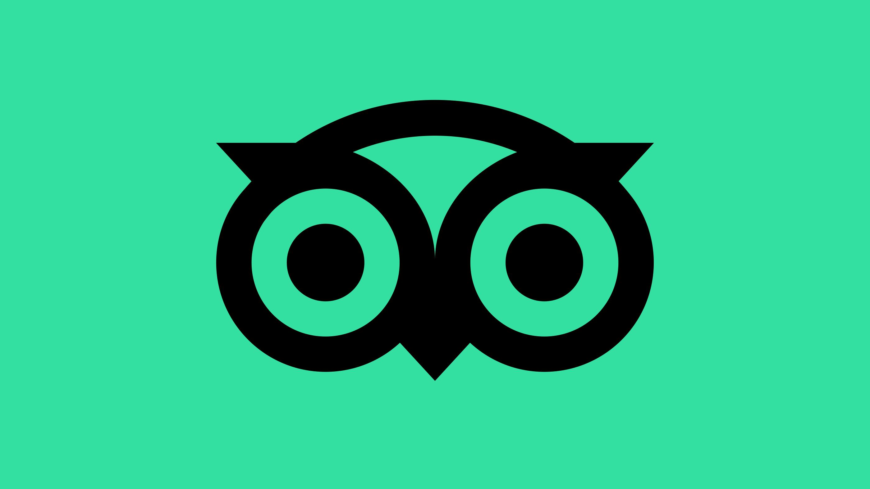 Rebranding di gennaio: Tripadvisor, GoDaddy e Fisher Price
