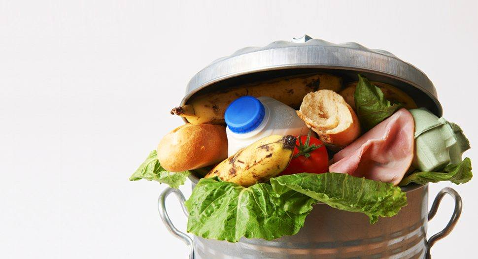 rifiuti cibo-batteri