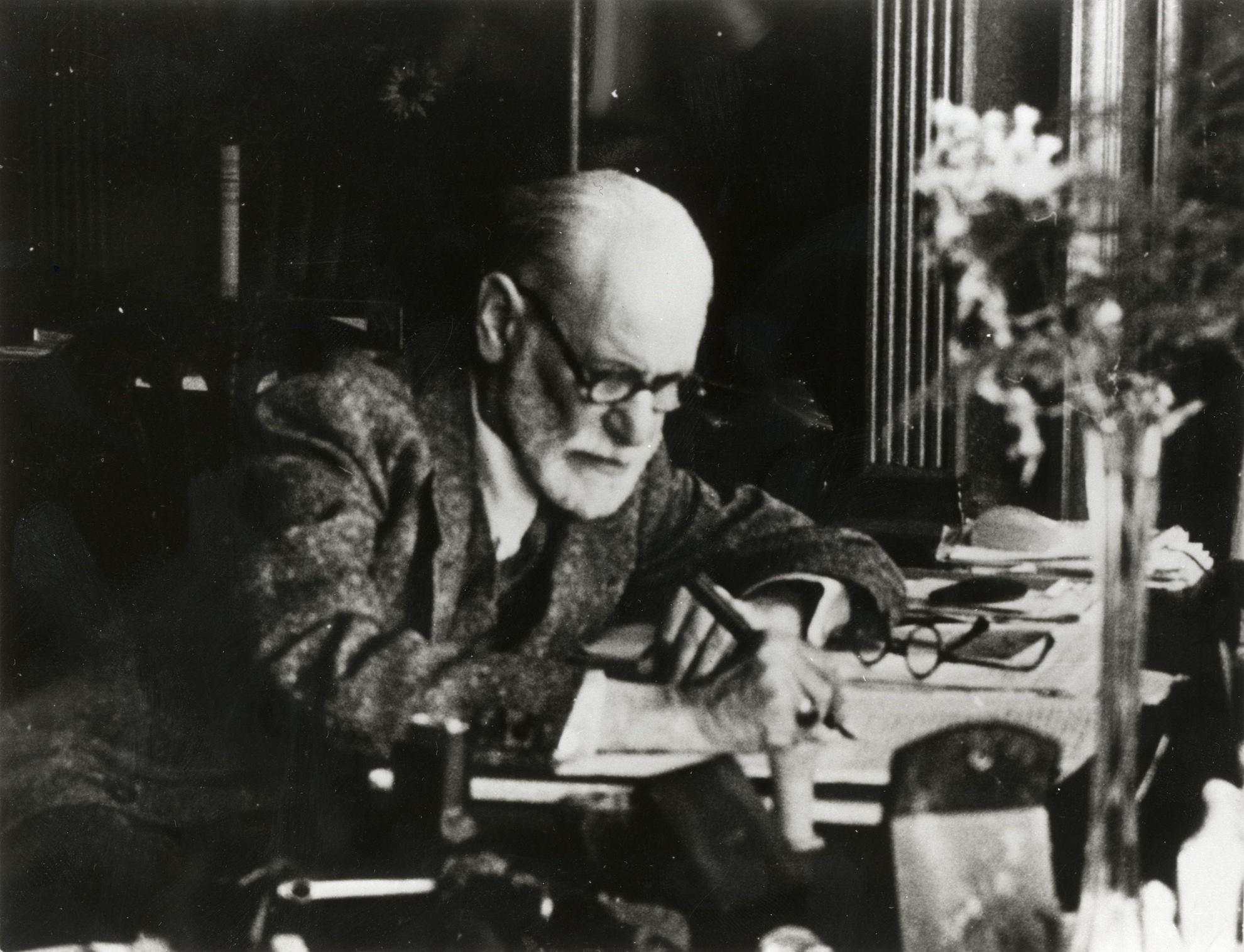 Un inedito Freud, dalla serie Netflix al nipote spin doctor