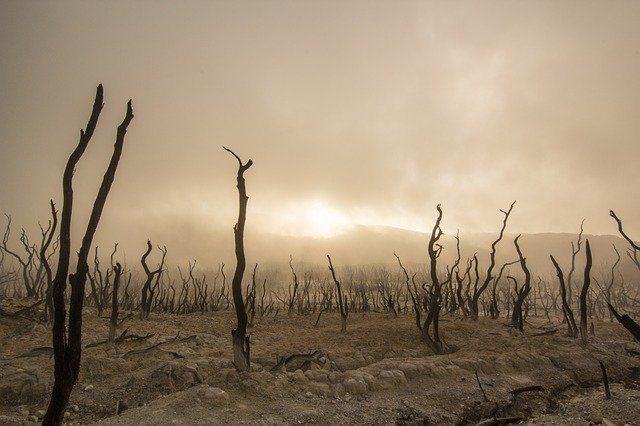 cambiamento climatico negativo