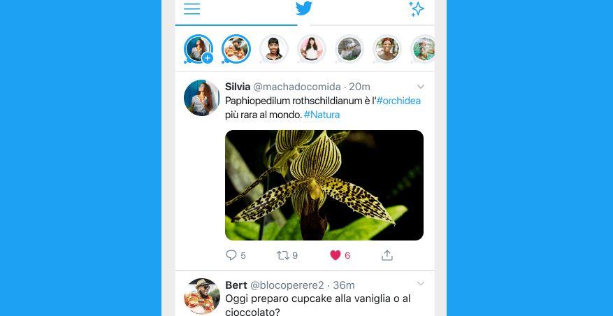 In Italia arriva Twitter Fleet, la nuova funzione con post che scompaiono dopo 24 ore