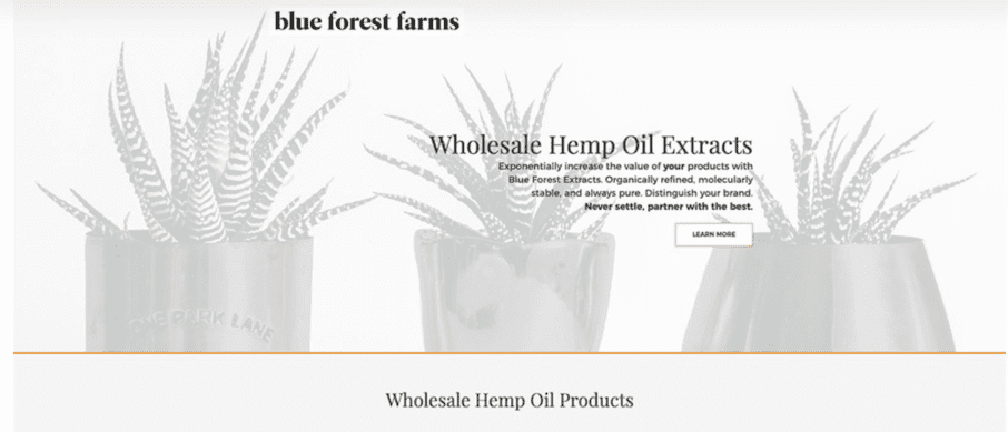 Landing Page Blue Forest Farm