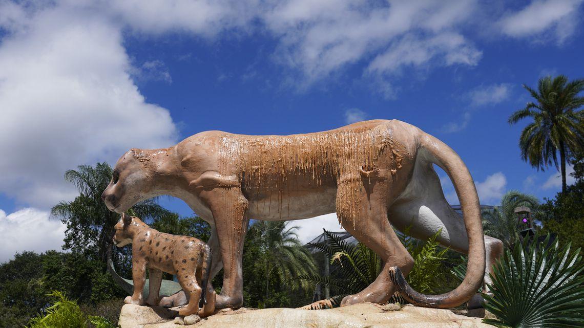 artisti per il cambiamento climatico, zoo tampa
