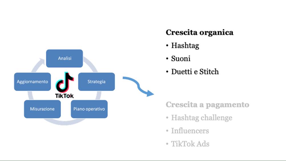 Fig. 1 strategia crescita organica